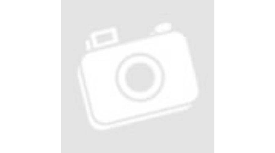 Cipővédő fólia kék 40 x 14 cm (CPE)  100 db  - EGYSZERHASZNÁLATOS ... fbc7284815